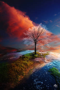 The Tree at the Edge of the World