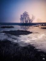 First Daybreak of Winter by MBHenriksen