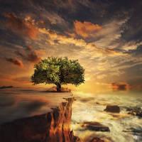 The Biggest Little Tree by MBHenriksen
