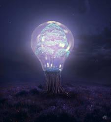 Tree of Light + Timelapse, Video Walkthrough, PSD by MBHenriksen
