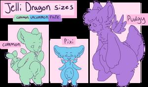Jelli Dragon Size Chart