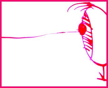 eye by MORAN-B