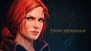 The Witcher Adventure game art Triss by Scratcherpen