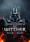 Witcher 3 Wild Hunt warrior 2
