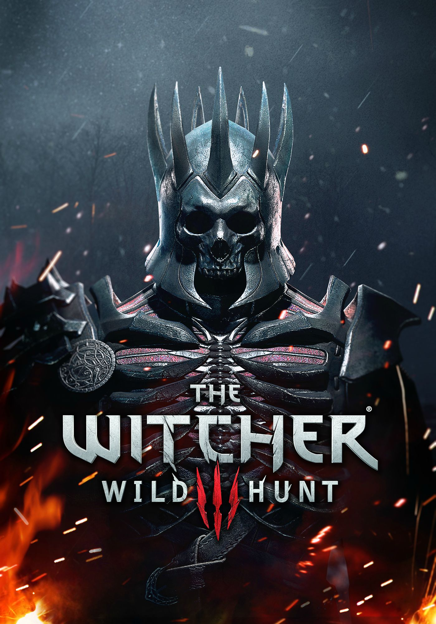 Witcher 3 Wild Hunt warrior 2 by Scratcherpen