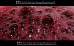 Bubbling blood texture 3