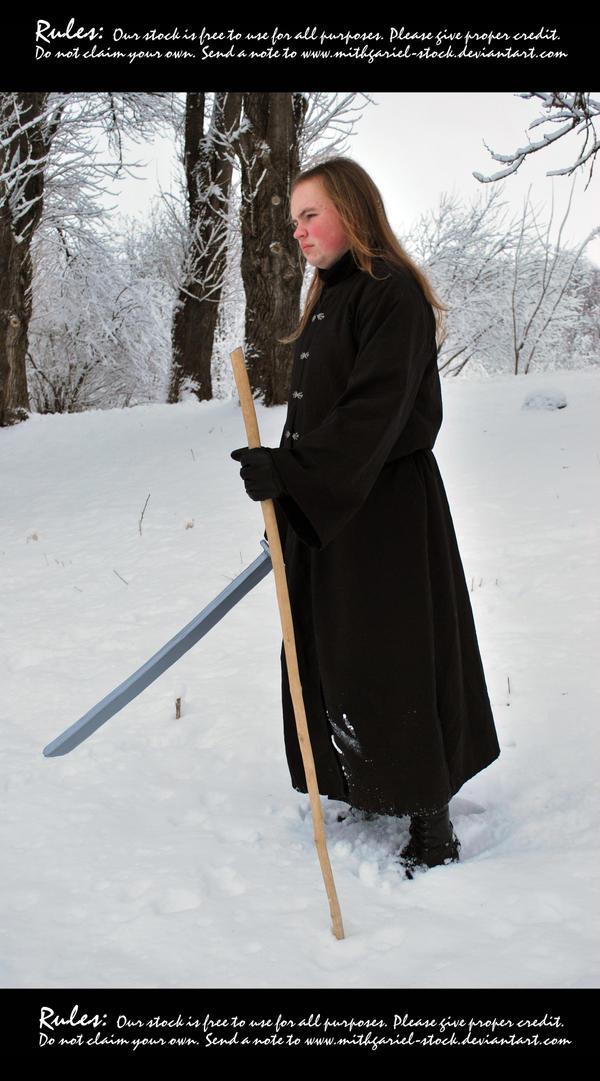 Winter wonderer 23 by Mithgariel-stock