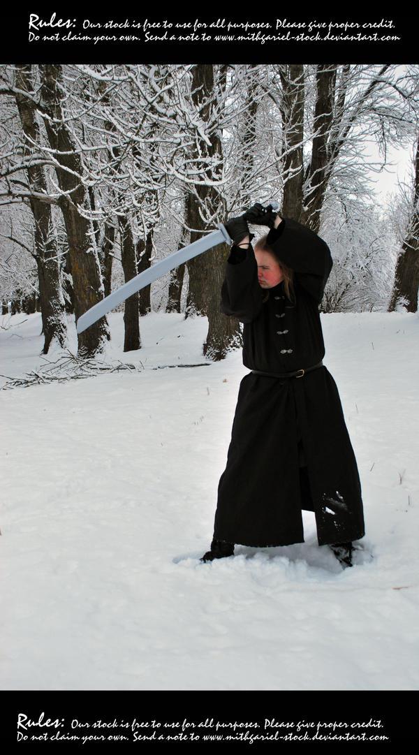 Winter wonderer 26 by Mithgariel-stock