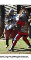 Knights Do Battle (11)