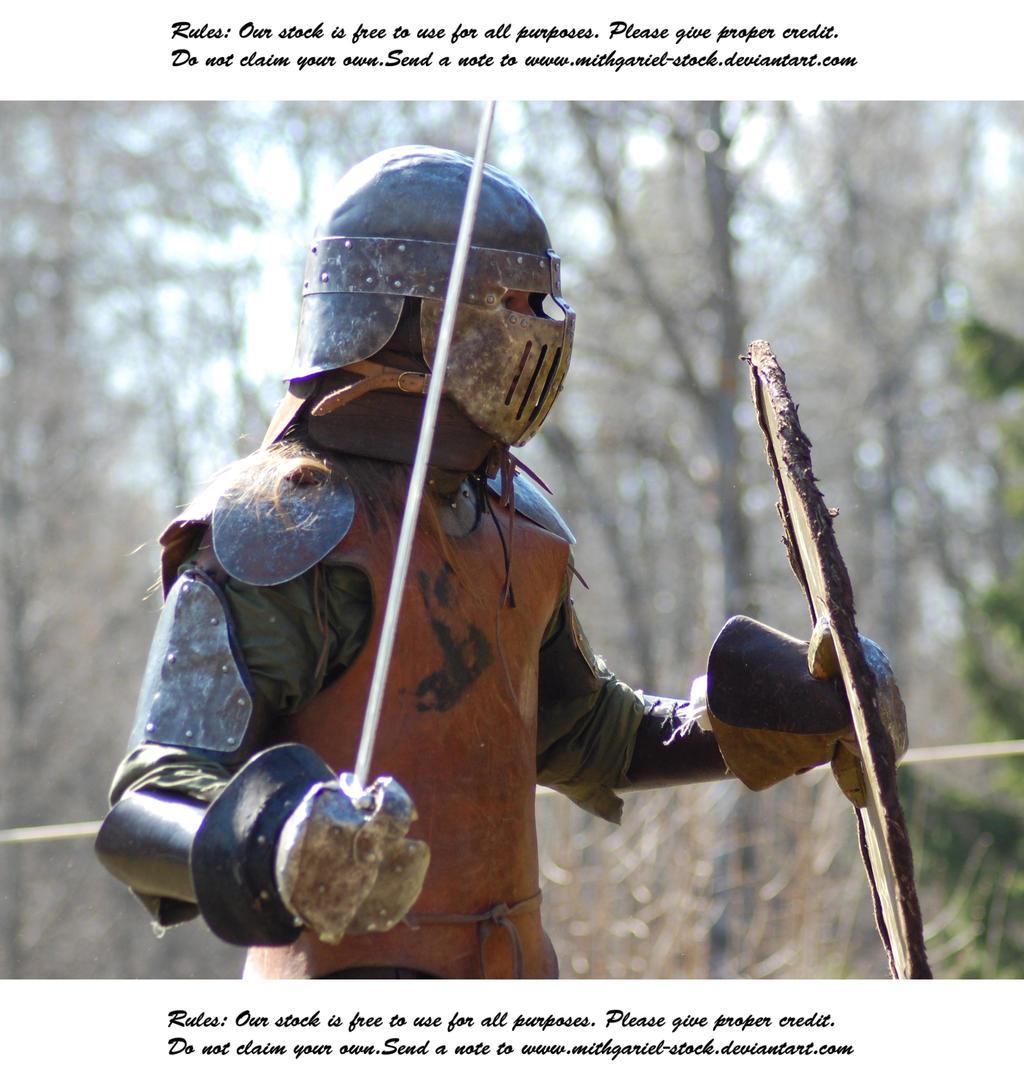 Vikings Do Battle (26) by Mithgariel-stock