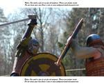 Vikings Do Battle (29)