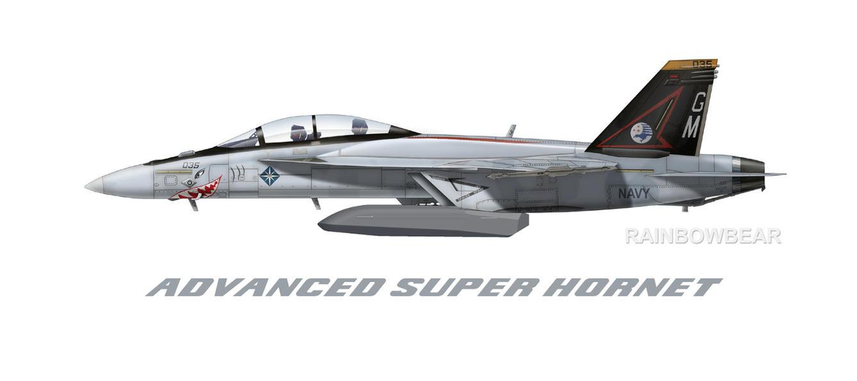 F 18 Advanced Super Hornet ADVANCED SUPER HORNET ...