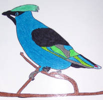 Jacksepticeye art jackabird by LyndiaPinda