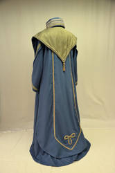 Dumbledore wizards robes-back by magic-needle