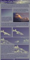 Fantasy Cloud Tutorial by charfade