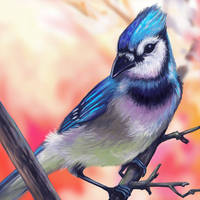 BlueJay Layer Paint by charfade