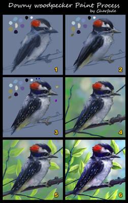 Downy Woodpecker Paint Process