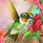 Layer Paint Ruby Throated Hummingbird