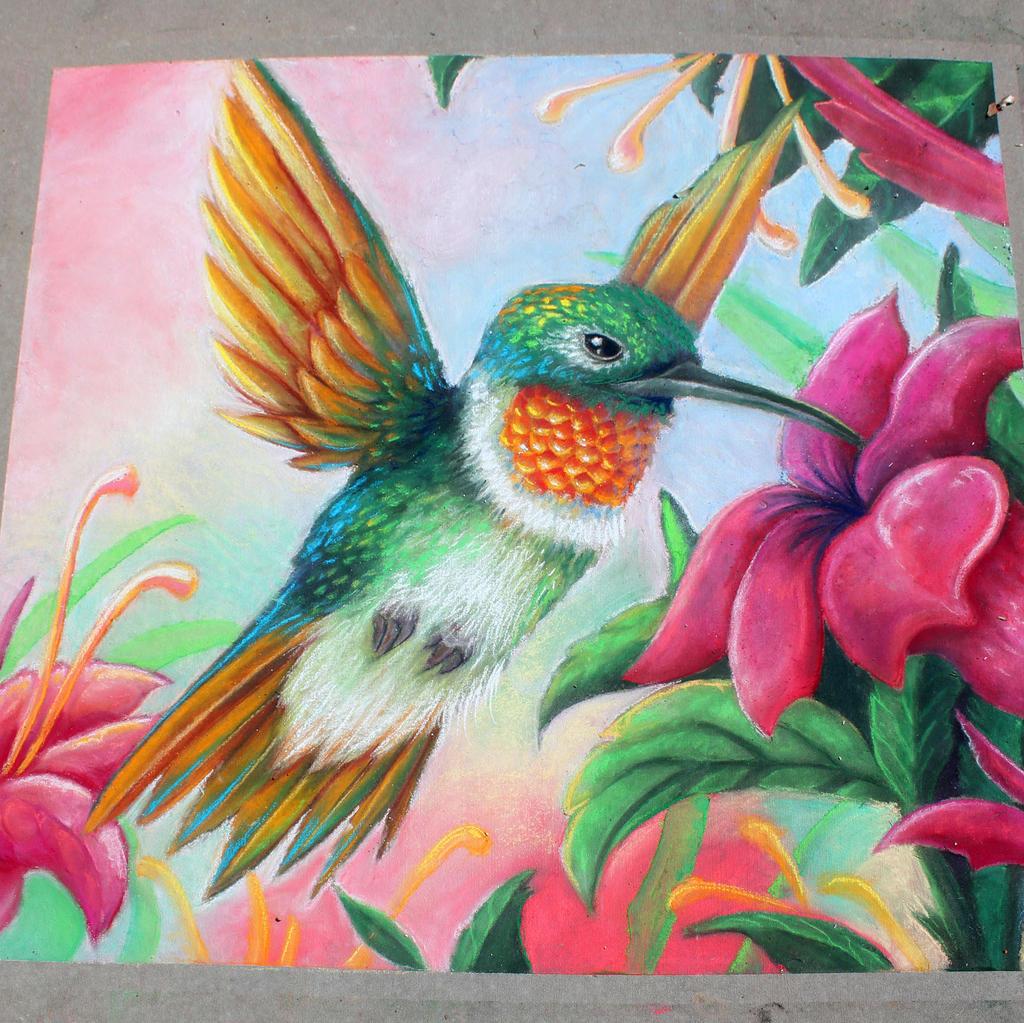 Humming Bird Chalk Art by charfade on DeviantArt