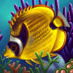 Layer Paint tropical Raccoon Butterfly fish