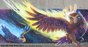 Zeus and Hera Space Owls Chalk Art by charfade