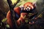 Red Panda digital art