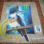Belted Kingfisher Chalk art