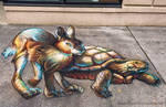 Tortiose Hare 3D Chalk Art
