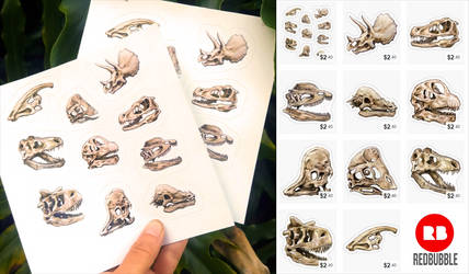 Dinosaur Skull Sticker Set by charfade