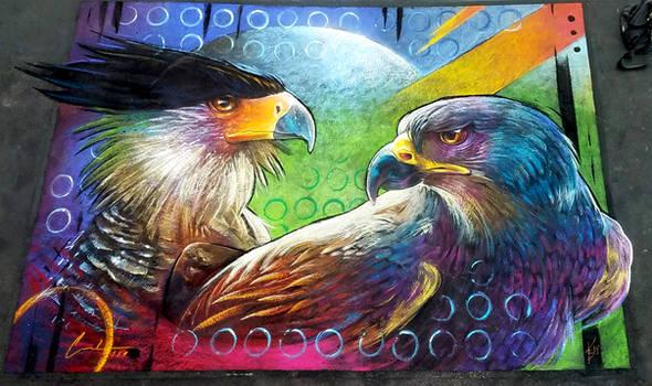 Mexican goshawk Crested Caracara Chalk Art