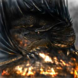 Dragon by thrankslash