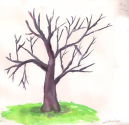 First Tree / watercolor
