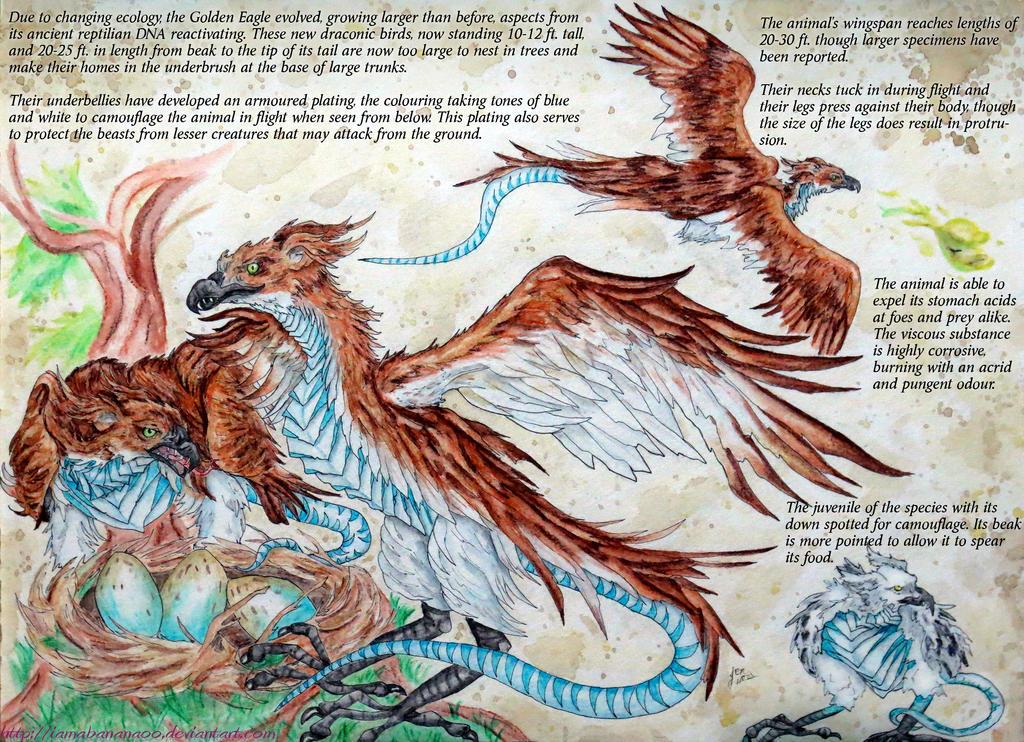 Draconic Birds - Golden Wardens by IAmABananaOo
