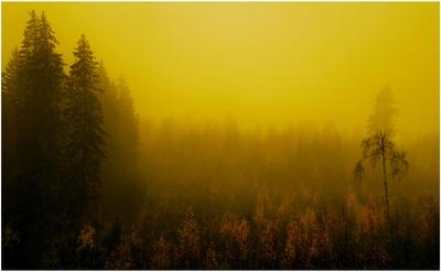 mysticalness by KariLiimatainen