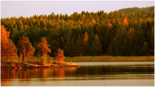 autumn colours  xxx by KariLiimatainen