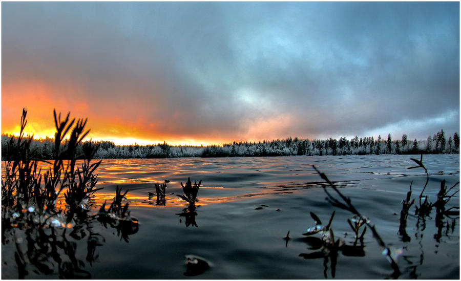 winter is here II by KariLiimatainen