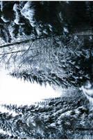 winter is here III by KariLiimatainen