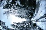 winter is here III