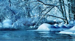 winter feeling .  ..