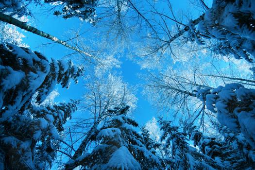 winter ................