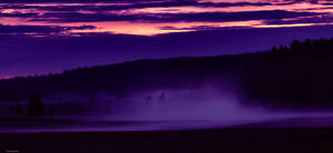 Fog by KariLiimatainen