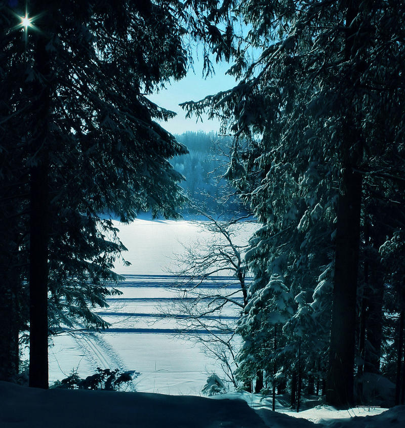 winter mood IV by KariLiimatainen