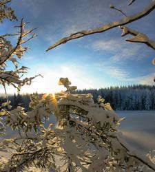 sun and snow by KariLiimatainen