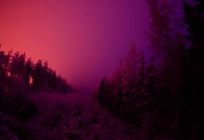 mysterious winter x by KariLiimatainen