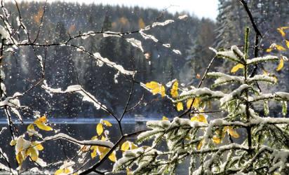 snowfall on the lake II by KariLiimatainen