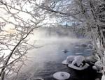 winter life ..