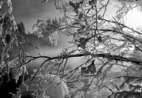 winter memories .. by KariLiimatainen
