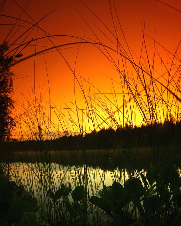 a beautiful summer night by KariLiimatainen