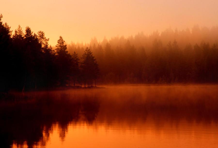 autumn morning by KariLiimatainen