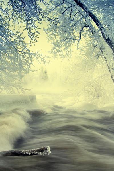 Is this wonderland by KariLiimatainen